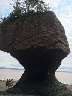 Hopewell_Rocks2